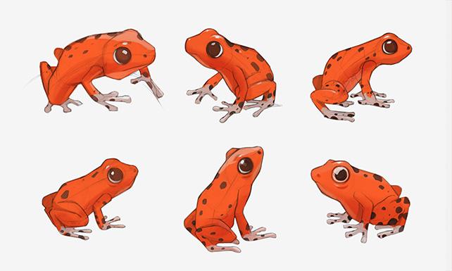 frog_02